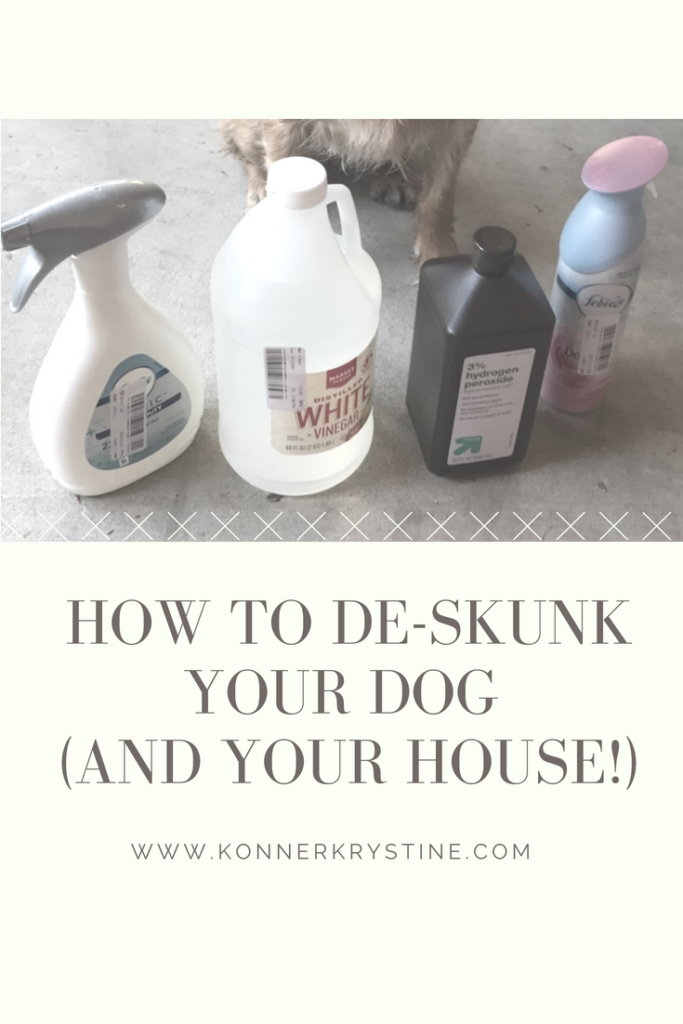 How to Remove Skunk Smell From Your Dog and Home